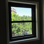 SoundBlock© doublehung window in CBD